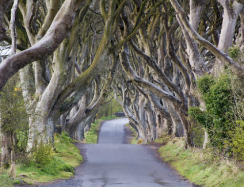 6 Must-visit Game of Thrones Filming Locations to add to your Travel Bucketlist