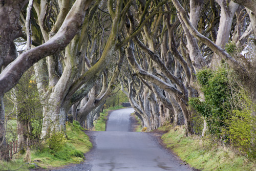 Westeros isn't a real place to visit, but here are some of the Game of Thrones filming locations that fans of the show can find on a real-world map…
