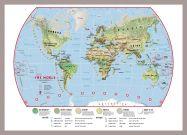 Medium Primary World Wall Map Environmental (Pinboard & framed - Silver)