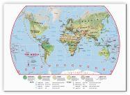 Medium Primary World Wall Map Environmental (Canvas)
