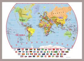 Small Primary World Wall Map Political with flags (Pinboard & framed - Silver)